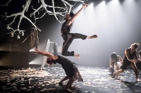 Terra Firma by National Dance Company Wales